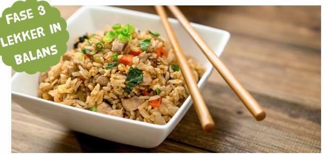 Powerslim Nasi Recept